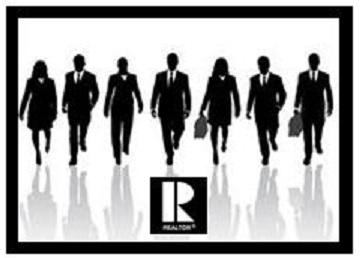 Realtor team